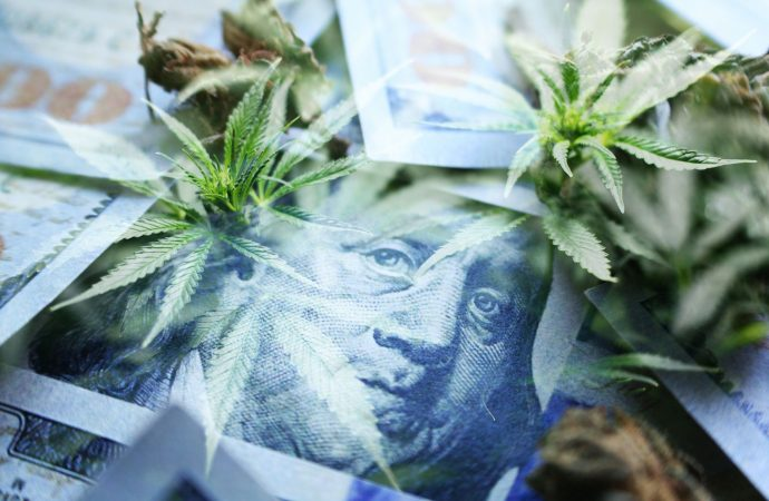 5 Things Every Cannabis Entrepreneur Must Know About Raising Money