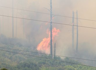 Wildfires: PG&E will place 10,000 miles of electric lines underground