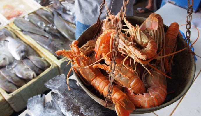 """Indonesia """"sea-to-table"""" platform Aruna hooks $35M led by Prosus and East Ventures Growth Fund"""