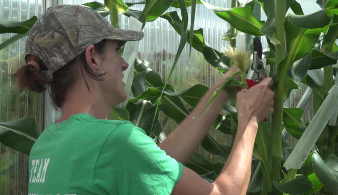 AgBiome lands $166M for safer crop protection technology